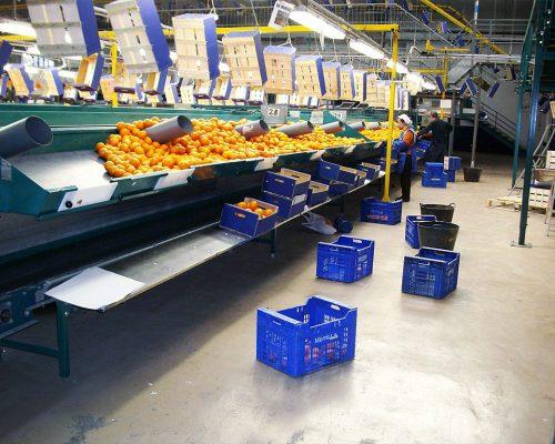 Pavimentos para la industria alimentaria